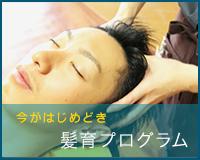 育髪プログラム